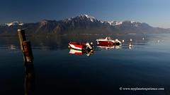 Lake Geneva (My Planet Experience) Tags: sky panorama mountain lake alps water landscape schweiz switzerland boat scenery suisse geneva lac alpine svizzera leman range genve montreux vaud genevalake laclman lacdegenve lelman wwwmyplanetexperiencecom myplanetexperience