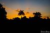 DSC_0103 (Promao80) Tags: lago tramonto cuba moron cavallo viaggio vacanza calesse