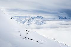 (Der_Brecher) Tags: winter bw dog sun snow ski cold color fog bregenzerwald brecher allesundnichts wilmwart elfriedediaries dingspalimpalim pudercrew ksschenundso famehuredeluxe