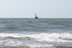 Sailboat on Ocean at Wild Dunes Resort (Performance Impressions LLC) Tags: ocean travel usa beach sailboat golf boat sailing realestate unitedstates southcarolina property resort tennis shore boating dining coastline condos luxury beachfront condominiums yachting isleofpalms oceanfront lowcountry rentals wilddunes vacationhomes luxurycondominiums wilddunesresort destinationhotelsresorts