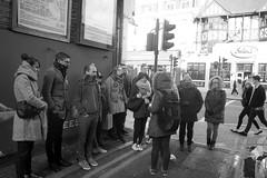 Group on a walking tour of Street art in Camden (IanAWood) Tags: urban stpancras walkingwithmynikon lbofcamden nikkorafs28mmf18g nikondf