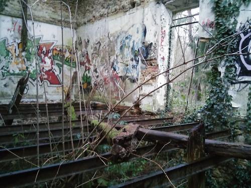 bois Livry-sur-Seine-001