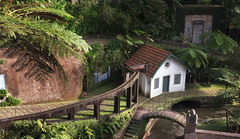 curvy lines in monte jardin (mateusz zdyb) Tags: portugal gardens monte madeira funchal 2016