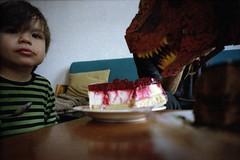 Tyrannosaurus Keks (R.O.Y.G.B.I.V.) Tags: cake keks dinosaur chocolate rasberry tyrannosaurusrex kodakportra400 superwide superangulon leicam3 leicasuperangulon21mmf34