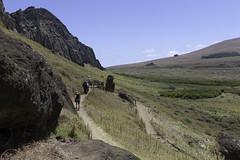 Tukuturi Moai at Rano Raraku (blueheronco) Tags: statues trail pacificocean moai easterisland quarry tuff rapanui isladepascua ranoraraku volcaniccrater poike tukuturi rapanuinationalpark sittingmoai
