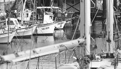 Darsena (Genova) (Federico Pitto) Tags: bw d76 genova hp5 nikonfe2 nikkor135mm28