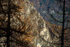 Formaggino Autunnale #15 ( YariGhidone ) Tags: life autumn mountain nature way stars landscape colours outdoor via val milky colori paesaggi montagna refuge conca stelle bivvy bivacco formaggino prali lattea germanasca cialancia