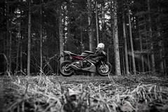 Black Forrest Daytona (bjoern.gramm) Tags: trees red color nature grass bike key triumph motorcycle daytona brembo superbike supersport motorrad xlite