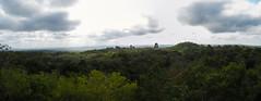 """Tikal: vue depuis le Temple à la Double Tête de Serpent <a style=""""margin-left:10px; font-size:0.8em;"""" href=""""http://www.flickr.com/photos/127723101@N04/25633571244/"""" target=""""_blank"""">@flickr</a>"""
