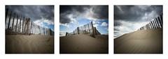 Dune (Mathieu Calvet) Tags: beach sand triptych dunes dune sable plage triptyque agde languedocroussillon hrault ganivelles latamarissire