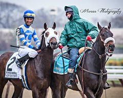 Adventist (EASY GOER) Tags: horse sports canon racing aqueduct 56 equine thoroughbreds 400mm 5dmarkiii