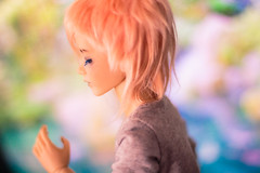 gust (JohnnyMort) Tags: doll dolls bjd dreamer abjd narin bimong narindoll narindreamer