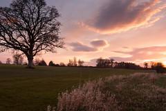 DSCF8090 (day tomorrow) Tags: ireland sunset sky nature clouds landscape carton ire cartonhouse