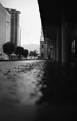 (eddieddieddie) Tags: newzealand bw water rain 80s agfa caffenolc 135format 35mmfilmscanningwellington