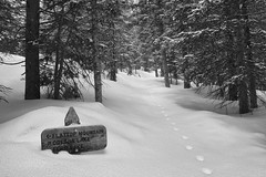 The Path (pantheist_bear_god) Tags: park trees winter mountain snow sign forest path rocky trail national snowshoeing rockymountainnationalpark
