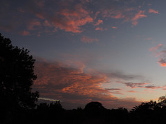 Orange Glow (Images by Jeff - from the sea) Tags: pink blue trees sunset sky storm clouds twilight nikon dusk bluesky palmtrees pinksunset pinkclouds bundaberg p520