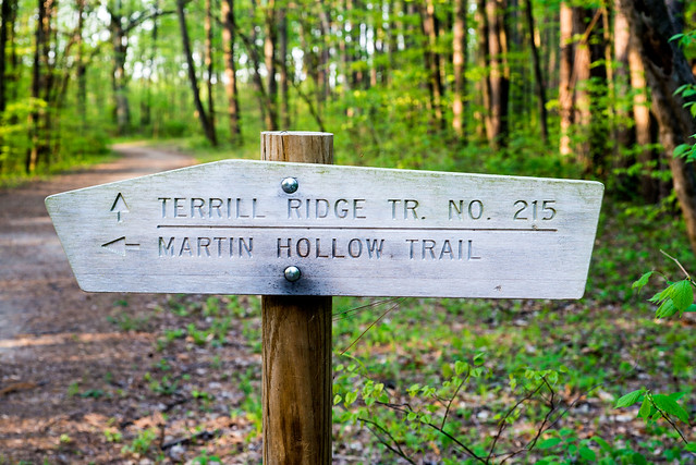 Hoosier National Forest - Martin Hollow - Hickory Ridge Lookout Tower - April 25, 2016
