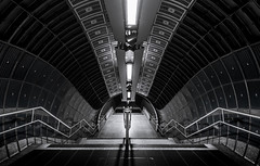 Extension (TS446Photo) Tags: city railroad blue urban white black detail london texture monochrome station architecture stairs contrast train underground lens lights mono nikon exposure cityscape metro interior jubilee transport tube steps rail londonunderground 20mm northern selective tfl lul d600