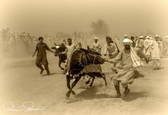 culture (TARIQ HAMEED SULEMANI) Tags: travel pakistan summer tourism trekking photography nikon culture sensational punjab tariq supershot theunforgettablepictures concordians sulemani tariqhameedsulemani