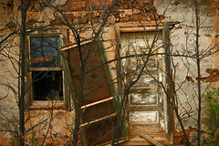 Close the Screen Door on the Way Out! (jwoodphoto) Tags: door house newmexico abandoned window rural decay screendoor jwoodphoto abyetas