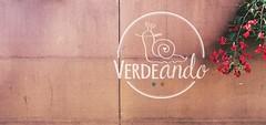 Verdeando Fest logo fondo madera