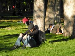 DSCN1536 copia (Cazador de imgenes) Tags: madrid park street espaa primavera photography photo spring spain nikon centro streetphotography streetphoto retiro espagne spanien spagna spanje spania  2016 elretiro spange retiropark p7000