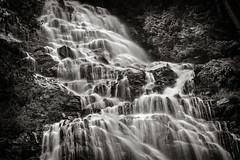 Bridal Veil Falls, British Columbia (EdBob) Tags: park travel nature water flow outdoors waterfall spring bc britishcolumbia pacificnorthwest serene flowing idyllic bridalveilfalls springtime silky bridalveilfallsprovincialpark edmundlowe edmundlowephotography allmyphotographsarecopyrightedandallrightsreservednoneofthesephotosmaybereproducedandorusedinanyformofpublicationprintortheinternetwithoutmywrittenpermission