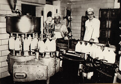 Workers Bottling Milk