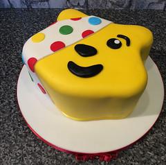 Pusey Bear Cake