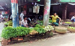 Vagetable Seller (RiddhoRaju) Tags: portrait fish shop market bongo progress business fishmarket bengal bangladesh bangla prosperity bengali shopkeeper htc bangladeshi bangali fishseller jessore anawesomeshot thefishmonger photoghrapy fishphotography catchthedream fishbusiness jessorebangladesh rajudey riddhoraju  fishmarketjessore jessorekhulnabangladesh   riddhorajuphotography