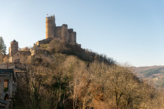 Chteau de Najac (dprezat) Tags: france castle nikon chteau d800 patrimoine cathare mdieval aveyron najac midipyrnes nikond800
