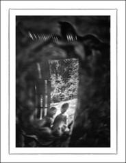 F_DSC1516-BW-Nikon D300S-LB-Scout-DG-50mm-May Lee  (May-margy) Tags: portrait bw blur lensbaby garden 50mm backyard bokeh taiwan scout    taipeicity  japanesehouse slidingdoors              repofchina doubleglass corridoroftime nikond300s maymargy maylee  mylensandmyimagination streetviewphotographytaiwan   linesformandlightandshadows   fdsc1516bw woodenslidingdoors natturalcoincidencethrumylens