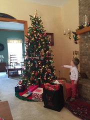 """Paul Looks at Grandma and Grandpa Morton's Christmas Tree • <a style=""""font-size:0.8em;"""" href=""""http://www.flickr.com/photos/109120354@N07/24196792924/"""" target=""""_blank"""">View on Flickr</a>"""