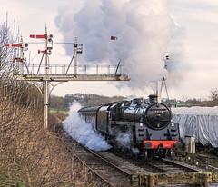 Signal Gantry (4486Merlin) Tags: england europe unitedkingdom derbyshire transport steam signals railways midlands swanwick gbr midlandrailwaycentre 73129 heritagerailways exbr brstd5mt460 caprotticrescendo