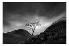 Waiting for spring  (explored Thank you) (Richard Hunter ARPS) Tags: glen richard hunter etive
