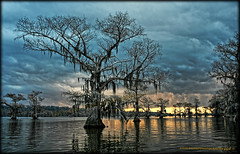 The Creepy One (SwampPhotography.com) Tags: trees sunset lake water clouds louisiana texas scenic vivid creepy swamp cypress caddo caddolake waterscape 2016 copyrightedbypaulrkeithallrightsreservednounauthorizedusageallowed swampphotographycom