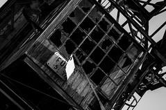 5 tonnes (Cyrill - cpixel.fr) Tags: old urban blackandwhite bw woman white abstract black france reflection wet girl architecture cat work buildings rouge nikon kitten chat noir factory place noiretblanc bureau 10 decay sony kitty sigma vert nb strasbourg explore reflet adobe urbanexploration brewery mines ft 20 exploration 1020 reflexion blanc usine damp abandonned manoir ancienne lightroom urbex slightly urbaine symetrie nex verrire 3n humide batiments 1650 d90 schiltigheim abandonne cpixel dsaffecte lgrement