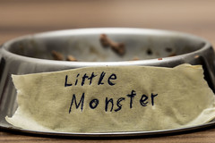 Macro Monday: Tag - Little Monster (Tria-media_Sven) Tags: tag bowl littlemonster macromondays canoneos5dmarkiii