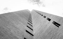 001-_2016-23 (Camilo Towers) Tags: chile santiago white black blanco architecture de punto y negro arquitecture contrapicado fuga