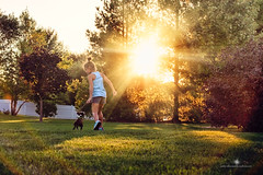 (Rebecca812) Tags: trees sunset summer portrait dog pet girl grass childhood horizontal puppy fun bostonterrier child play friendship sweet candid joy innocent happiness run lensflare stick rearview care playful nostagic rebecca812
