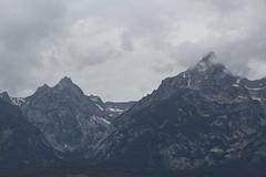 At the Feet of Giants (LookSharpImages) Tags: wyoming jacksonhole jacksonholewyoming
