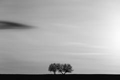 Minimale Bilderwelt - 37/366 (Gruenewiese86) Tags: white black nature monochrome canon germany landscape natur minimal 365 minimalism landschaft weiss schwarz 6d 366 minimalismus 3652016