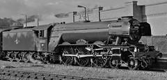 FLYING SCOTSMAN MONOCHROME (P.J.S. PHOTOGRAPHY) Tags: green flying railways malton scotsman 2016 britsh brunwick 60103