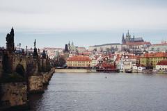 Karlv most, Praha (A. Baraska) Tags: bridge prague charles praha most czechrepublic karlv
