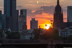 Sunny day in Frankfurt (frescographic) Tags: city sunset sun skyline clouds skyscraper dawn lights sonnenuntergang sundown frankfurt wolken citylights dämmerung mainhatten commerzbank maintower nikon1
