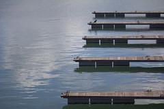 El embarcadero (fertraban) Tags: cuatro mar gijn 4 asturias ave embarcadero cimadevilla pjaro xixn cantbrico simetra cormorn cimavilla