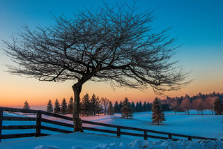 Sunrise over the snow in Caledon