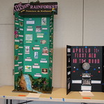 History projects on the Amazon Rainforest and Apollo 11.