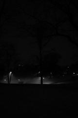 XT1-03-20-15-29-2 (a.cadore) Tags: nyc newyorkcity blackandwhite bw vertical night landscape centralpark uptown fujifilm 27mm xt1 xf27mmf28 fujifilmxt1