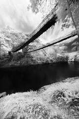 Unspoken (Ralph Yabut) Tags: bridge sky blackandwhite leaves clouds canon river dark ir rocks fineart philippines infrared bohol hangingbridge blackandwhiteinfrared infraredphotography 850nm philippinelandscapes